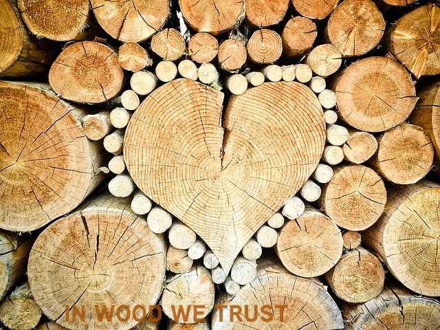 Madera Estructural   Sobre las construcciones en madera