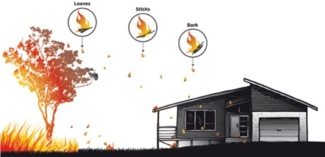 Impacts of bushfire on buildings